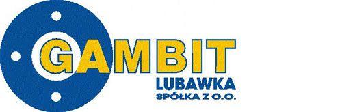Hornet - Gambit Lubawka - Logo - Partner